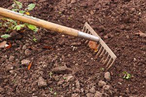 Garten von Unkraut befreien