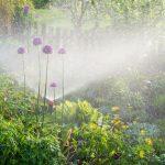 Eine Tiefbrunnenpumpe hilft bei der Gartenarbeit