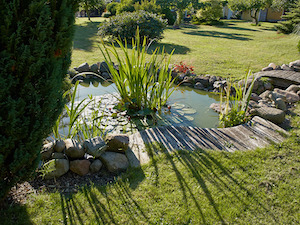 Wer einen Teich im Garten hat sollte es sich auch überlegen eine Gartenpumpe zu kaufen