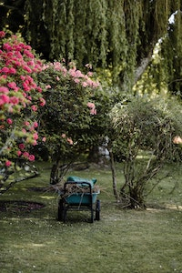Es gibt verschiedene Arten von Gartenwagen