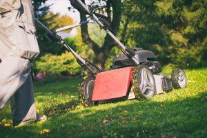 Ein Mulchmäher vereinfacht die Gartenarbeit und verbessert den Rasen