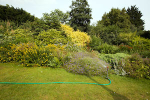 Im heissen und trockenen Sommer muss man den Garten oft und regelmäßig bewässern