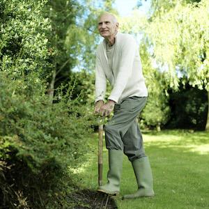 Ein Garten muss kontinuierlich gepflegt werden