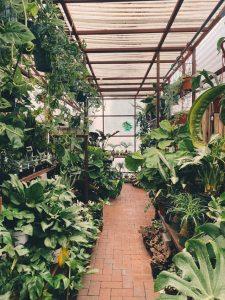 Gartenregale eignen sich perfekt für den Wintergarten