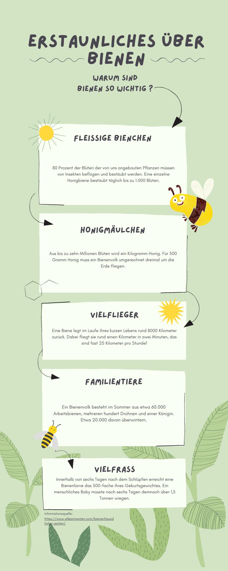 Bienen Infografik