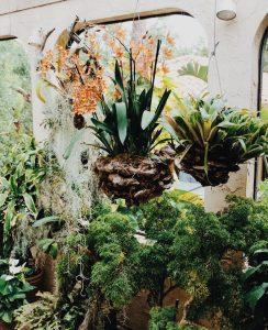 Blumenampel 4