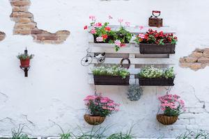 Außenregal mit Blumen